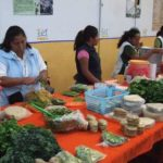 México, en octavo lugar de 162 países que generan comestibles orgánicos