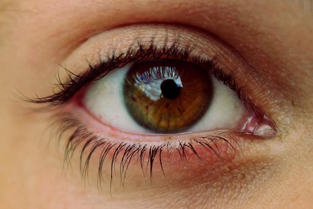El perejil es importante para tener una vista saludable  (Usuario Flickr: Denise Coronel)