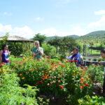 Biodiversidad y Manejo Sustentable de los Recursos
