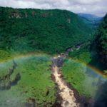 ¿Conoces el Informe 'Amazonía Viva 2016'?
