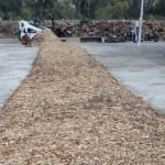 Modelo de biorrefinería convierte desechos orgánicos en energía