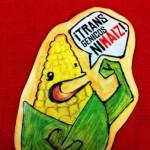 Admite Sagarpa que México importa soya y maíz transgénicos