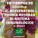 El Resveratrol Mejora El Sistema Inmunológico