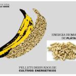 Energía verde de los residuos del plátano
