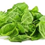 Cómo Cultivar Espinaca Orgánica en Casa