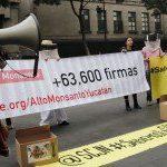 En la CIDH, denuncia de apicultores mayas contra la soya transgénica