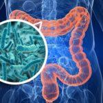 7 formas de sanar tu flora intestinal y mejorar tu salud digestiva
