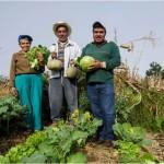 FOMIN y GESGIAP implementarán mecanismo para compensar a productores mexicanos por capturar carbono en suelo y mitigar el cambio climático