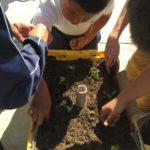 Experiencias interculturales en el rancho de Vía Orgánica: la visita de Touchstone Community School