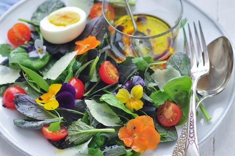 Microleave-Edible-Flower-Salad