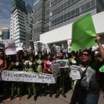 Prevén expertos presión mundial a México por la tala en Tajamar