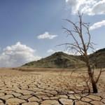 Alimentos y agua: agenda urgente e importante