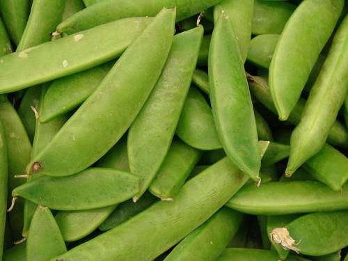 Snap Peas. Por Wikipedia.