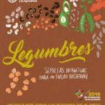 El poder de las legumbres: grandes chefs desvelan sus recetas en un nuevo libro