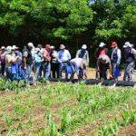 Apoyan a pequeños agricultores