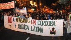Monsanto en retirada: el abajo que se mueve