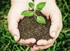 Ministros de América Latina y el Caribe trazan una ruta hacia la agricultura sostenible