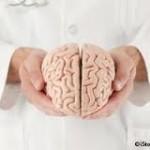 Aumente su Movimiento Diario para Evitar el Encogimiento Cerebral Relacionado con la Edad