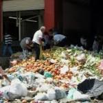 Reducir el desperdicio de comida mitigaría efectos del cambio climático