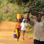 Exhorta FAO a reducir los riesgos de desastres