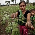 """""""Evitar la migración campesina, reto para Guatemala"""""""