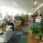 ¿Cómo ser más sustentable en la escuela y en la oficina?
