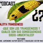 Crisis del concepto de gen y alimentos transgénicos