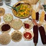 Vive en situación de inseguridad alimentaria una cuarta parte de los mexicanos