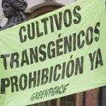 Greenpeace responde con 'contundencia' a la carta de los premios Nobel sobre los transgénicos