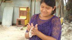 Desigualdad de género en los sistemas agroalimentarios de América Latina y el Caribe
