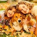 La Causa de la Mitad de los Casos de Envenenamiento Animal – ¿Usted Comete Estos Errores?