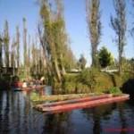 A partir de desechos orgánicos rehabilitan chinampas de Cuemanco