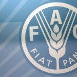 No sólo de pan…Y de la FAO, ¿qué?