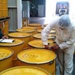 Miel y exportación: Marco Buenrostro y Cristina Barros