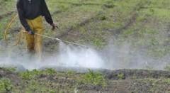 Descubren plaguicidas altamente tóxicos en agua de Sinaloa y Península de Yucatán