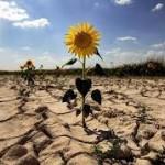 Crónica de un desastre climático anunciado