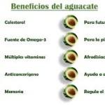 10 Poderosos Beneficios de Comer Aguacate