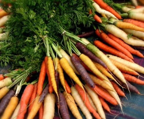 Variedades de zanahoria. Por Living well a UHN