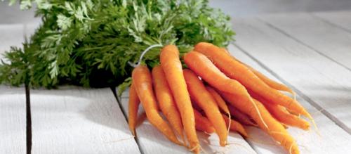 Zanahorias. Por Academia Goal
