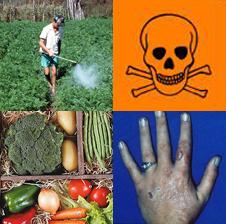 agrotoxicos, pesticides