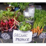 Alimentos orgánicos: aliados naturales para combatir el tránsito lento