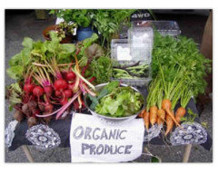 Alimentos Organicos, food