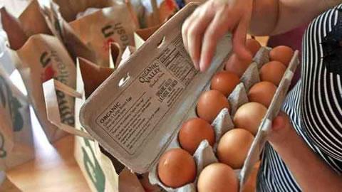 alza precio huevo, egg