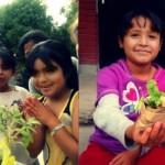 CultivArte: Vía Orgánica y el Instituto Allende Cultivando Salud a Través de Arte, Educación y Nutrición