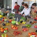 Entender la alimentación como un bien común