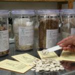 Las semillas son el presente, el pasado y el futuro de nuestra independencia alimentaria