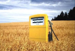 biocombustibles, biofuels