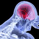 La interconectividad entre la ansiedad e inflamación