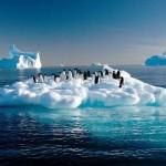 En el Vaticano, 60 alcaldes analizan medidas contra el cambio climático