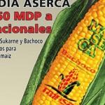 "Nueve compañías acaparan 91% de ""apoyos"" para comercializar maíz"